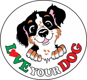 dog training club love your dog