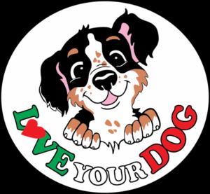 dog training club love your dog