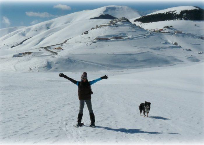 escursioni a 6 zampe trekking